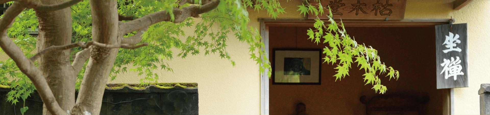 長興寺の坐禅